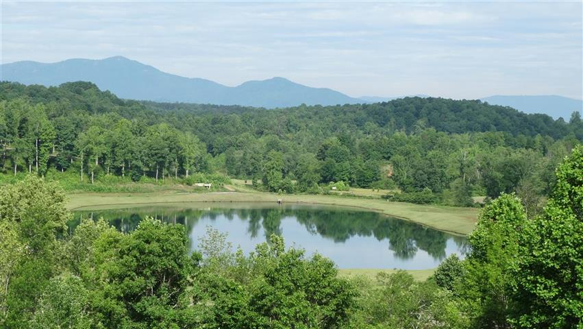 Think Tryon International Equestrian Center & Resort REDUCED!! MOTIVATED!